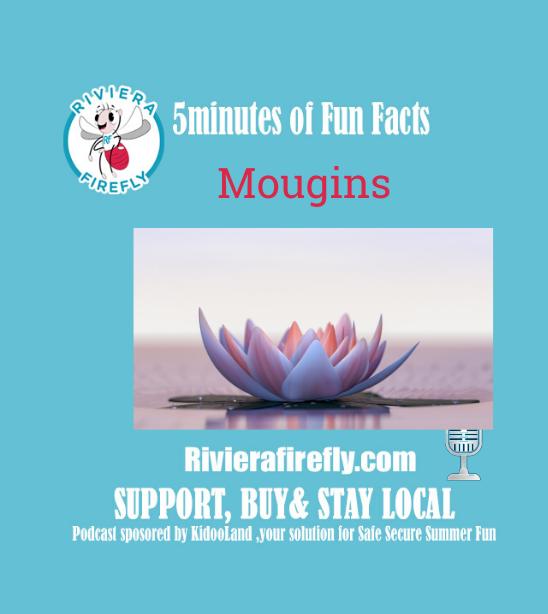 Discover Mougins