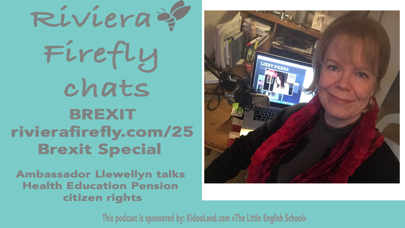 25: Brexit Pensions Health Citizenship with AmbassadorLlewellyn